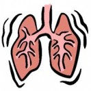 Клиническое течение Abscessus pulmonis